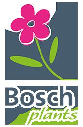 bosch plants